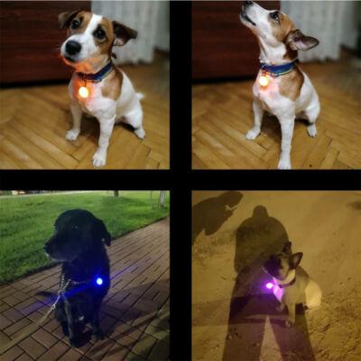 LED világítós medál nyakörvre